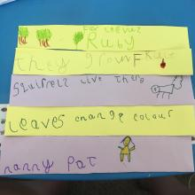 Ruby's reasons for celebrating trees